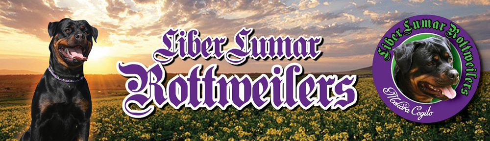 Liber Lumar Rottweilers